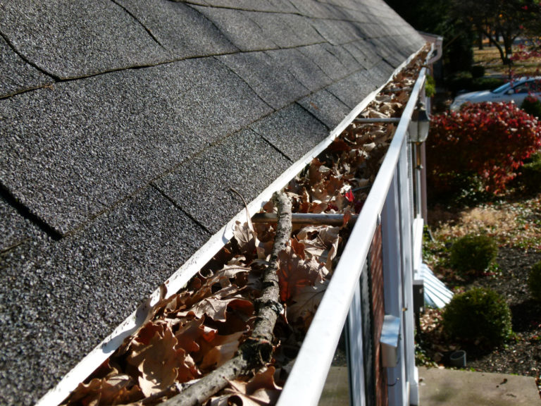 williamsburg-clogged-gutter-cleaning